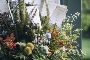 fiori di oltre il giardino di Varese al Mulino Dell'Olio